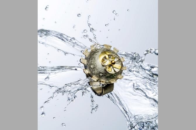 """Ring """"Eine Blume nur"""", Foto: Manuel Krug"""